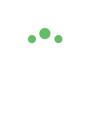 BPN Business Analysts